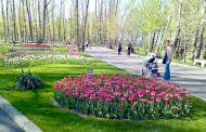 Parcurile mari din Piteşti: curate, pline de viaţă şi culoare