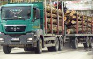 La Vidraru, sub ochii organelor statului: fie ploaie, fie vânt, cărăm lemne cu avânt!