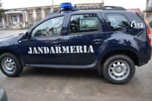 Cursuri pentru JANDARMI, în Germania și Marea Britanie
