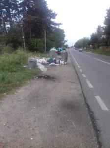 Pe DN 7C, la Călineşti - Gunoaiele au ajuns în şosea