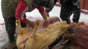 Cât costă examenul trichineloscopic la stat? Verificarea cărnii de porc, 11 lei