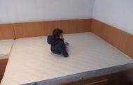 COPIII SĂRMANI din Ştefăneşti au primit mobilă şi un pat de 5 STELE
