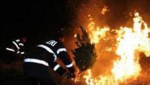 La Albeştii de Muscel ard 9 hectare de vegetaţie!