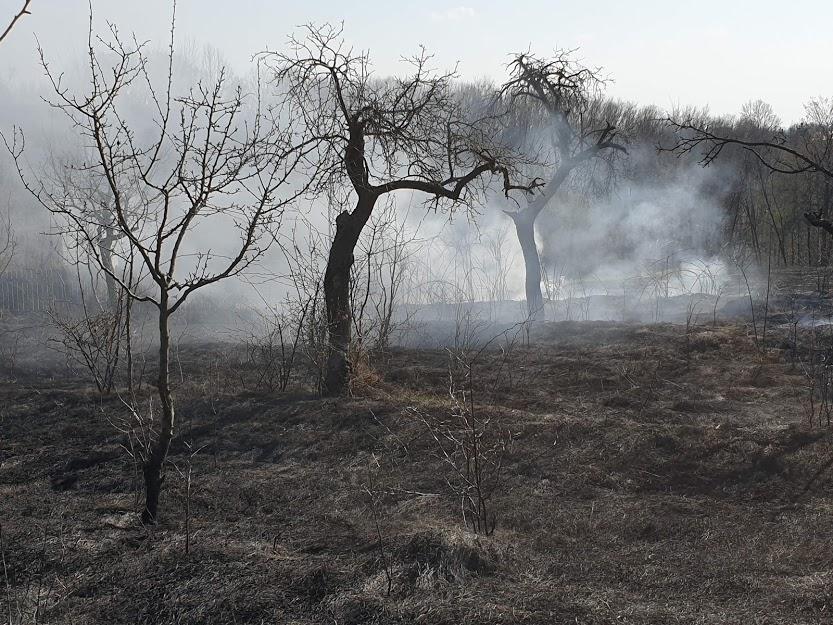 A pus foc la Moşoaia, a ars şi terenul vecinilor!
