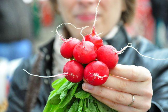 Ridichile roșii de lună reduc riscul de cancer, protejează rinichii şi ficatul, ajută și la slăbit