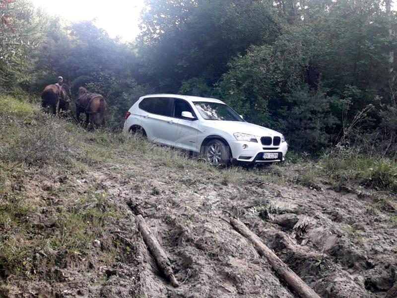S-au împotmolit cu maşinile pe drumuri forestiere