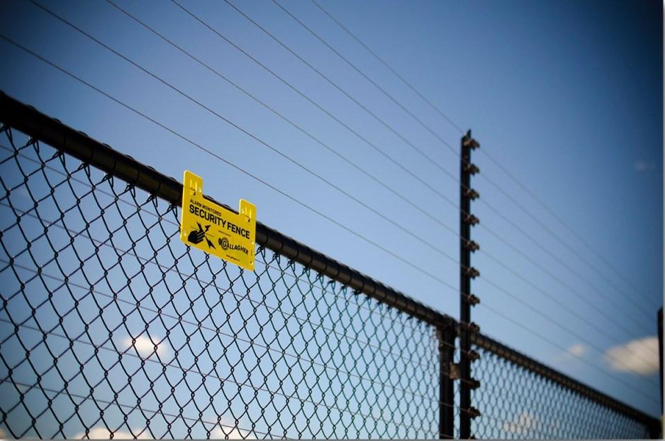 Prima SOLUŢIE pentru limitarea urşilor: garduri electrice!