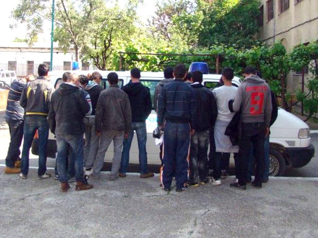 Sirieni ascunşi printre cutii cu marfă