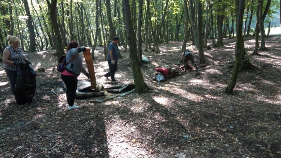 Campanie Romsilva în păduri din Argeș