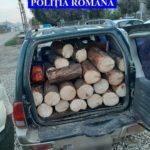 Zeci de HOȚI prinși în pădurile din Argeș