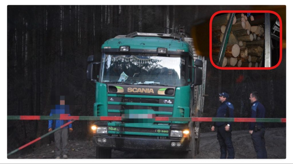 Camion ticsit cu lemne, INTERCEPTAT la Nucșoara