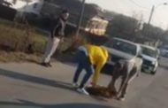 (VIDEO) CÂINE ACCIDENTAT MORTAL DE TAXI ÎN ZĂVOI
