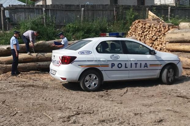 Continuă acţiunile de combatere a furtului de lemne