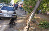 VIDEO ACUM: Accident lângă Parcul 1907
