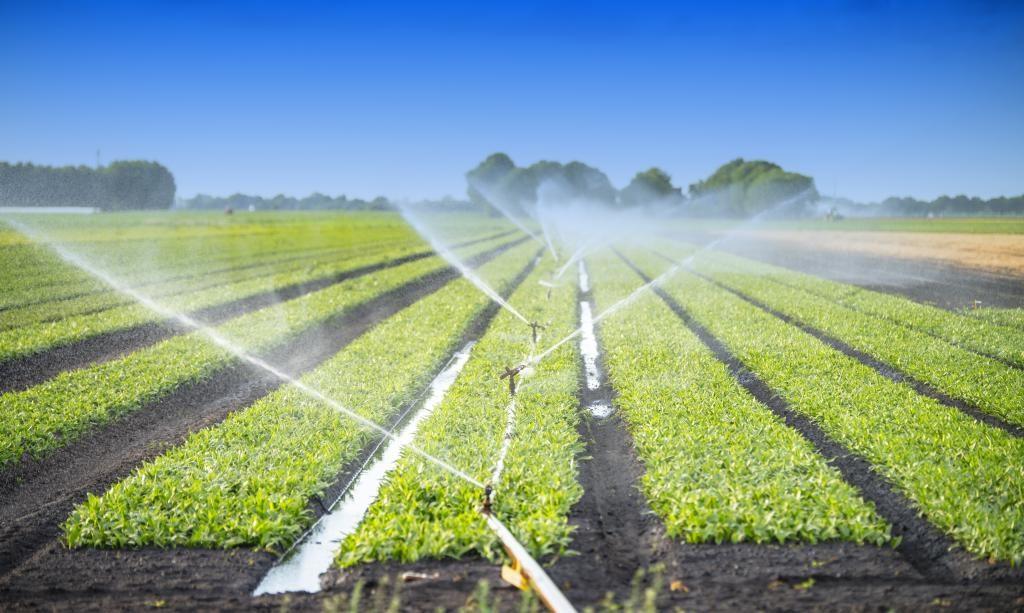 Subvenție la factura de energie pentru irigații