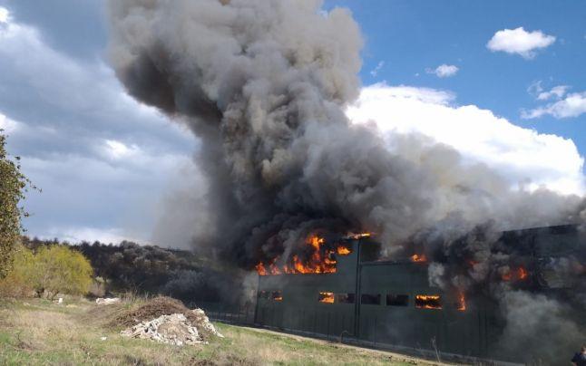 Video: Hală în flăcări în Argeș, la Stâlpeni. Ard materiale plastice