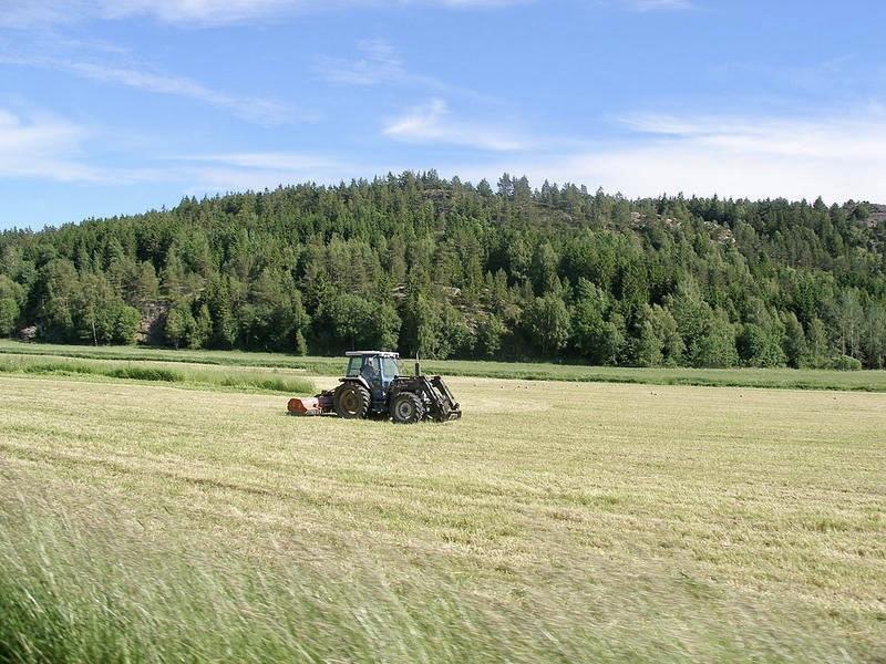 Luni începe recensământul agricol