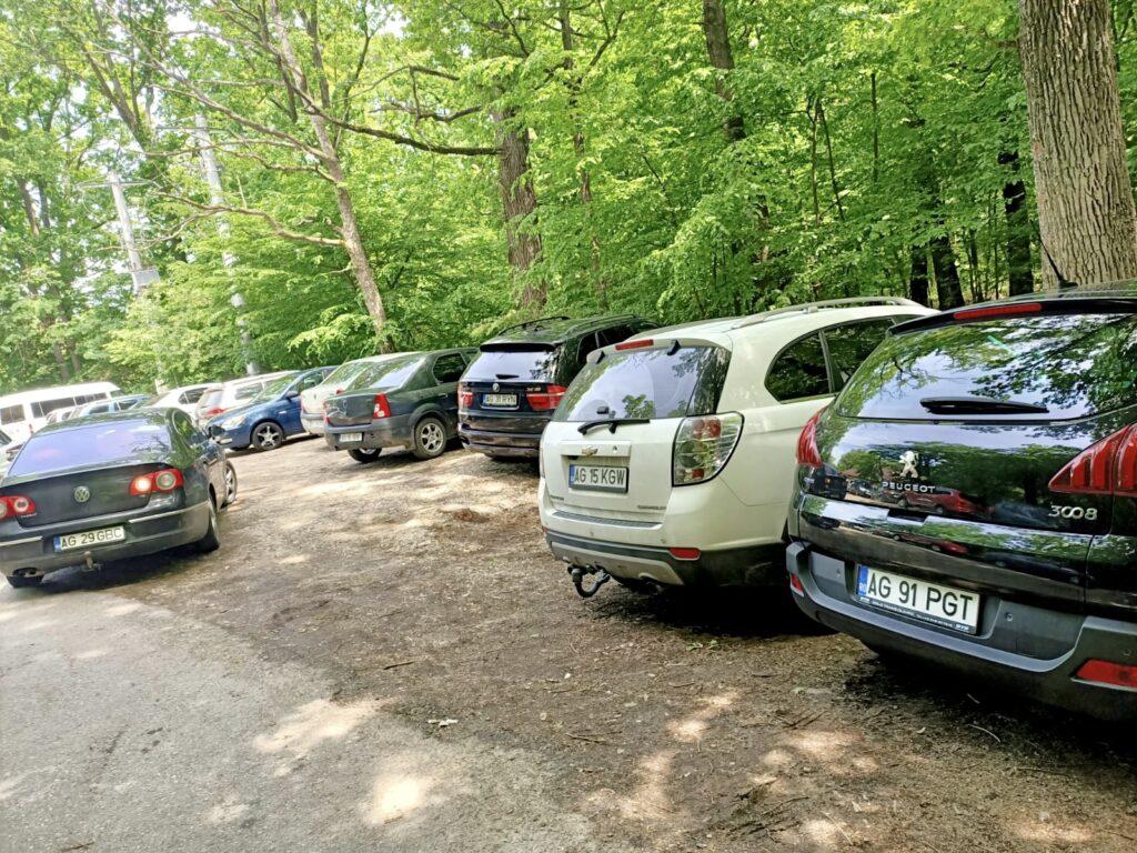 În weekend, la Zoo Pitești e teroare, fiindcă n-ai unde parca!