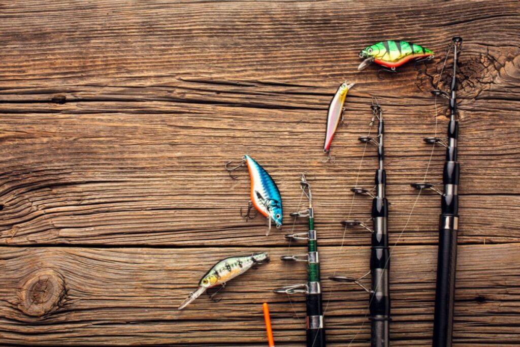 La pescuit în județul Argeș: sculele, momeala și locațiile potrivite