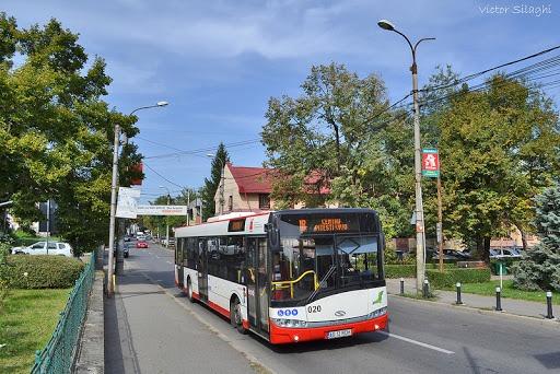 Autobuzele