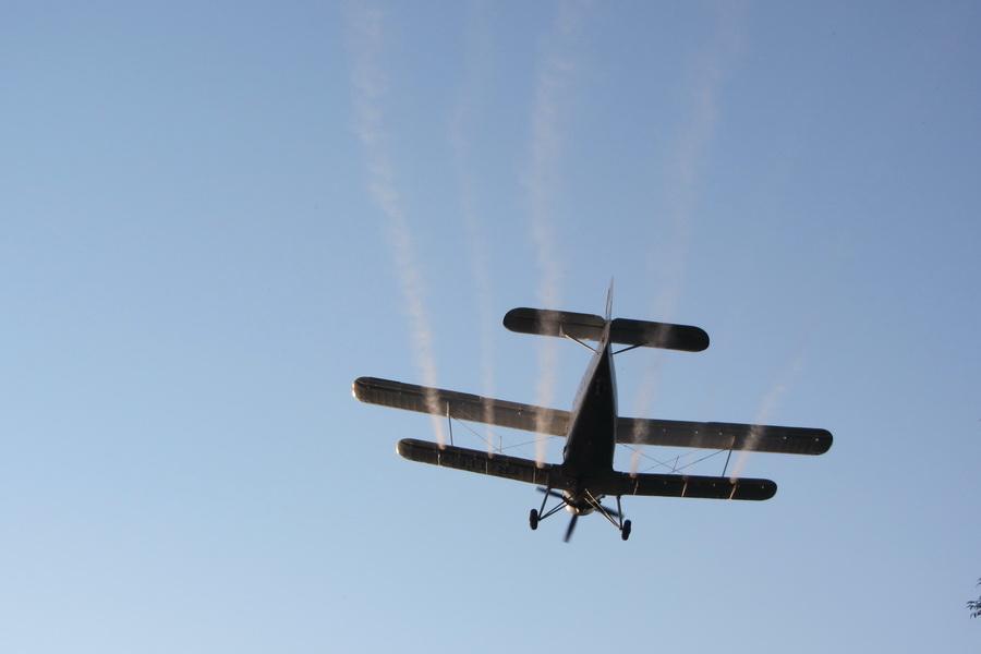 Dezinsecție aeriană în Pitești
