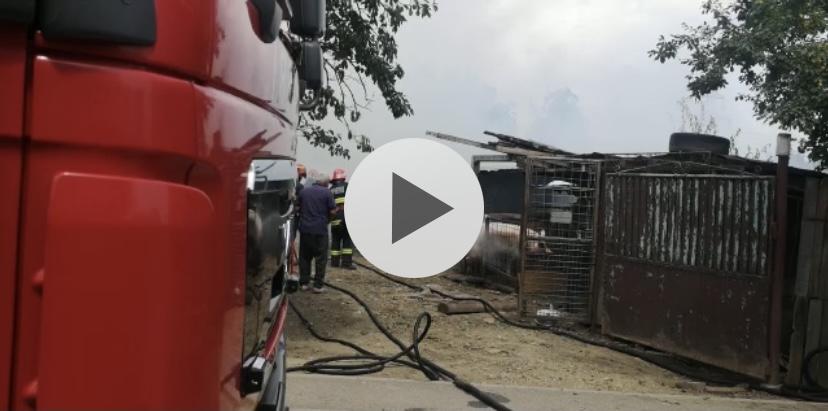 Incendiu acum la un adăpost de animale din Mărăcineni