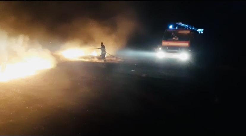 Video: Incendiu de proporții pe un câmp din Călinești