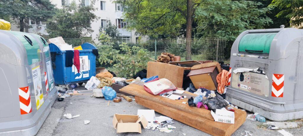 Cu patul la ghena de gunoi în Pitești