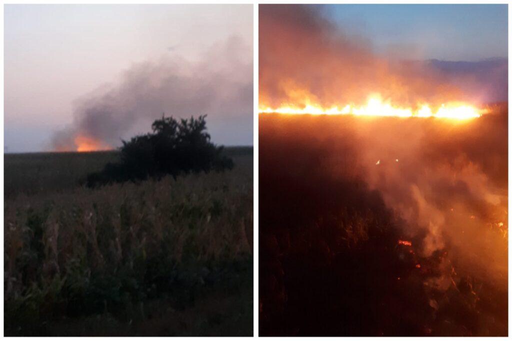 Video: Incendiile au produs pagube în mai multe localități din Argeș