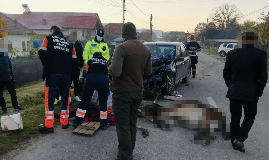 Video: Accident în Argeș. Căruțașul a scăpat,  măgărușul a murit