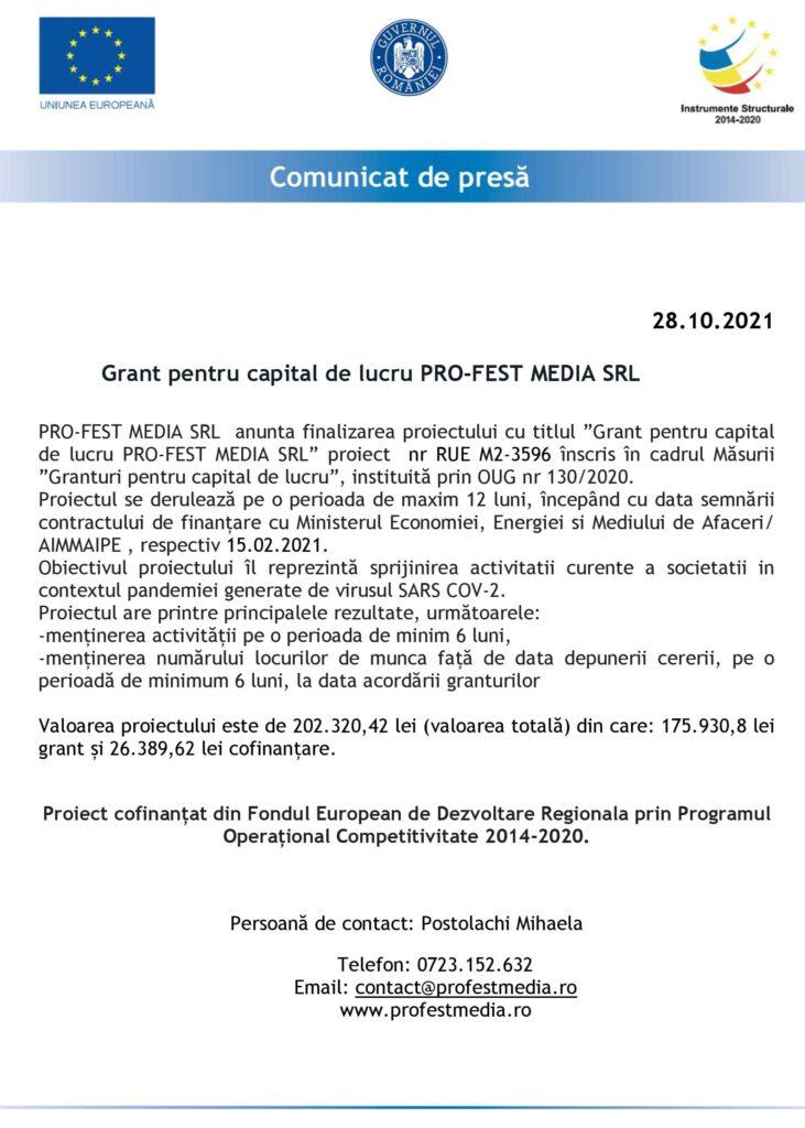 FINALIZARE PROIECT SC PRO-FEST MEDIA srl